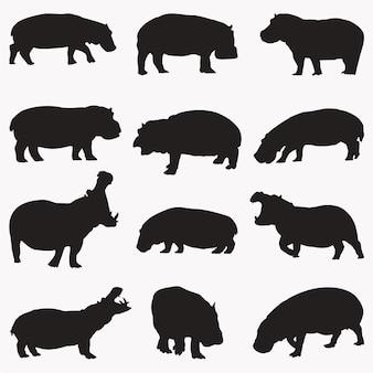 Silhouettes d'hippopotames