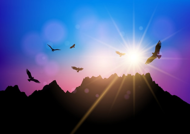 Silhouettes d'oiseaux qui volent contre le ciel coucher de soleil
