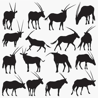 Silhouettes d'oryx