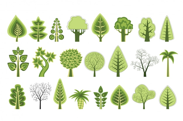 Silhouettes plates d'arbres