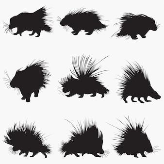 Silhouettes de porc-épic