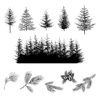 Silhouettes réalistes d'arbres d'onifères et de branches avec des cônes illustration vectorielle