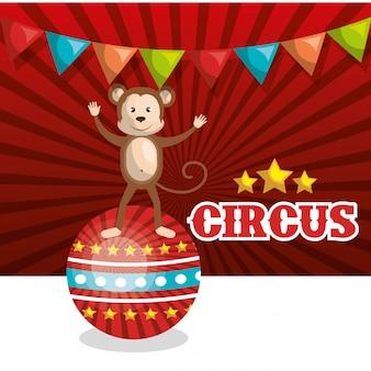 Singe, cirque, animal, icône, isolé