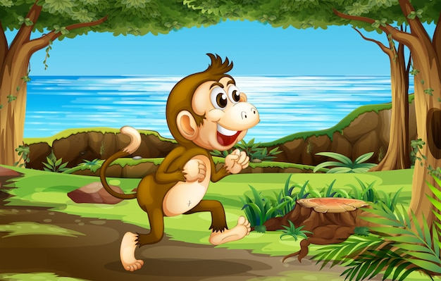 Un singe dans la jungle