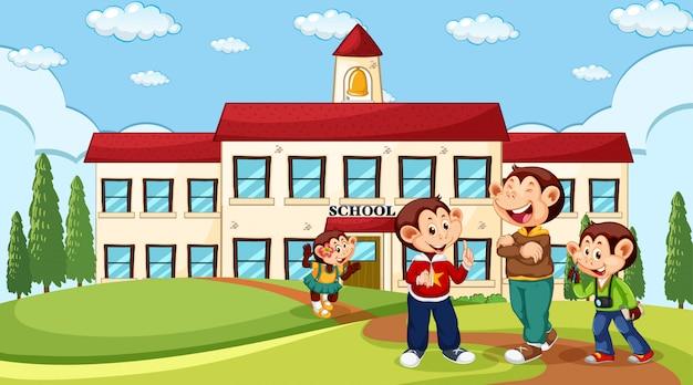 Singe à l'école