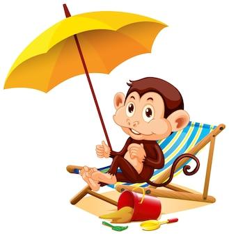 Singe heureux assis sous le parapluie