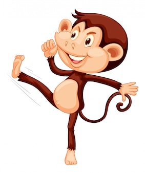 Un singe heureux sur un fond blanc