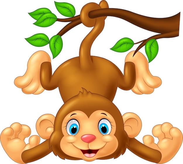 Singe mignon dessin animé suspendu à une branche d'arbre