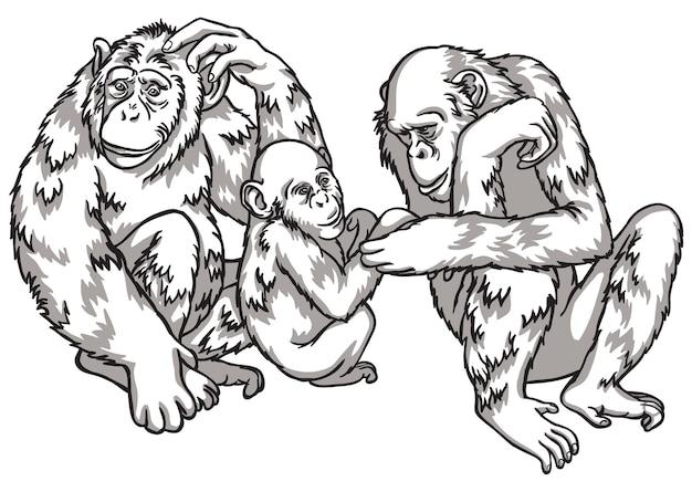 Singe noir et blanc avec une famille. illustration vectorielle. symboles du nouvel an chinois