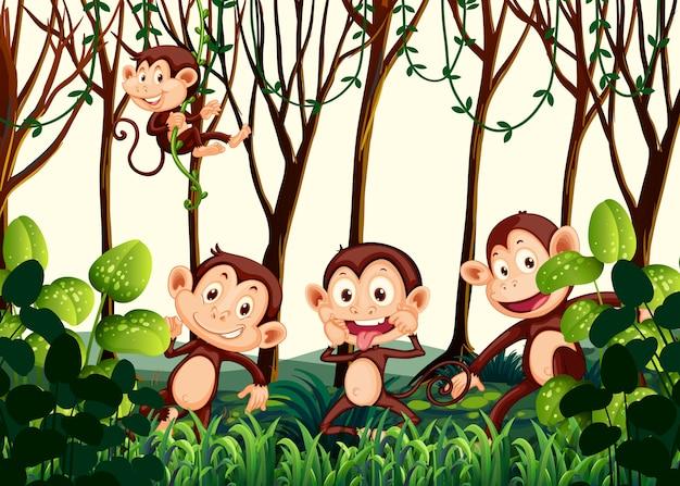 Singe vivant dans la jungle