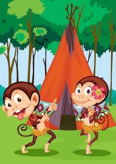Singes camping