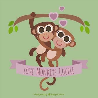 Singes loving couple