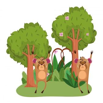 Singes mignons dans la forêt
