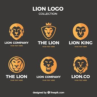 Six logos de lion, style plat