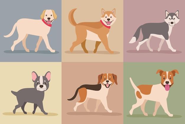 Six mascottes de chiens
