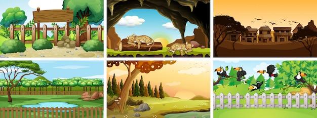 Six scènes avec des animaux dans un parc