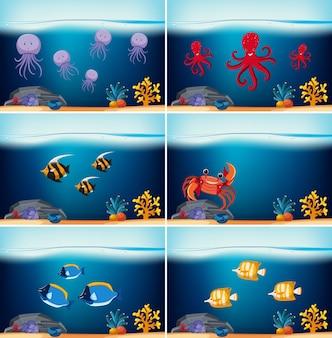 Six scènes sous-marines avec différents animaux marins