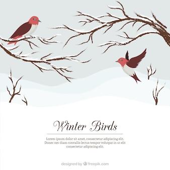 Snowy fond de paysage avec de jolis oiseaux et branches