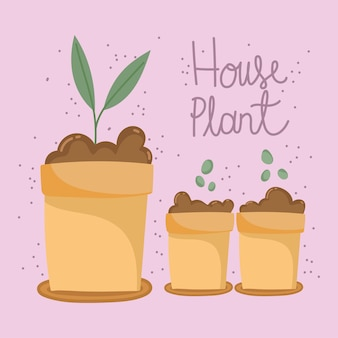Sol de croissance des plantes d'intérieur