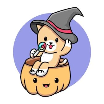 Sorcière de chat mignon assis sur l'illustration de dessin animé de citrouille
