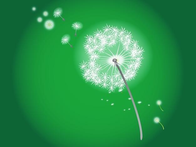 Soufflant fleur floral vecteur de pissenlit