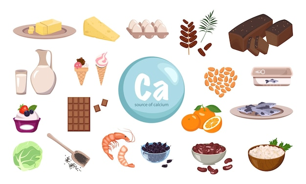 Source de calcium un ensemble de produits laitiers noix et fruits secs aliments biologiques naturels riches en minéraux...