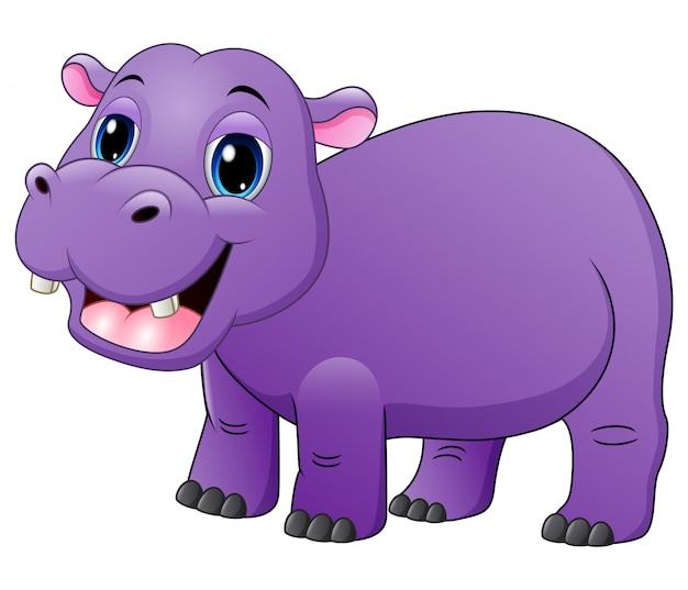 Souriant bébé hippo isolé sur blanc