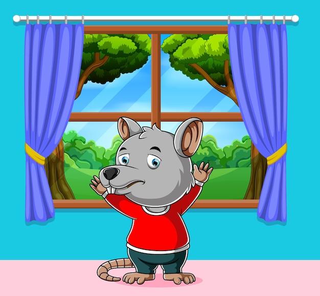 Souris regardant l'extérieur et debout près de la fenêtre