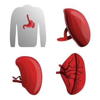 Spleen icon set