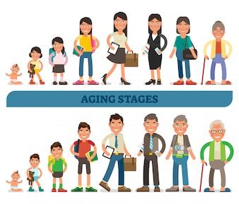 Stades de vieillissement