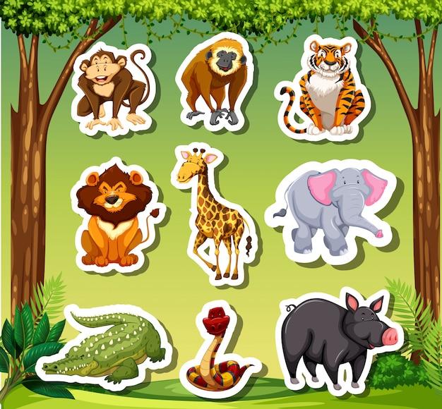 Sticket de nombreux animaux sur fond de jungle