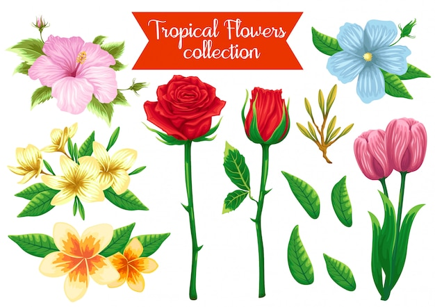 Stock vector set d'illustration objet de fleurs