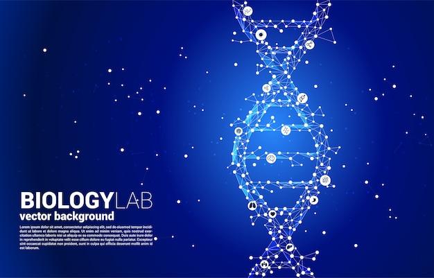 Structure génétique de l'adn vectoriel du polygone de ligne de connexion de points. concept de biotechnologie et de biologie scientifique.