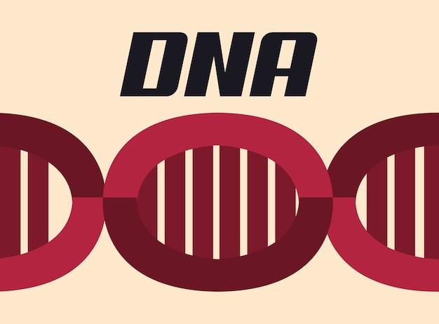Structure de molécule d'adn rouge