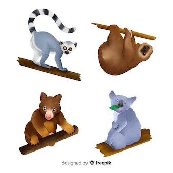 Style aquarelle de collection d'animaux exotiques