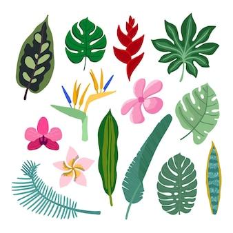 Style de collection de fleurs et de feuilles tropicales