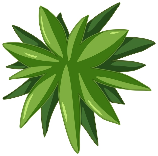 Style de dessin animé de feuilles vertes sur fond blanc