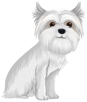 Style de dessin animé maltais sur fond blanc