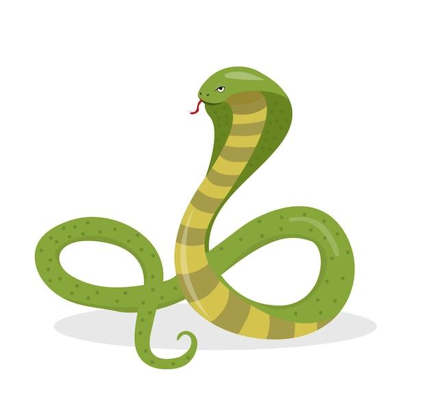 Style de dessin animé plat king cobra. serpent isolé sur fond blanc, élément du logo. illustration vectorielle.