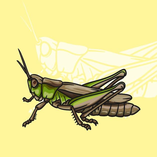 Style de dessin animé sauterelle agricole ravageur animal vector illustration