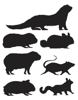 Style de dessin d'illustration de la collection de rats
