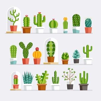Style plat de cactus.