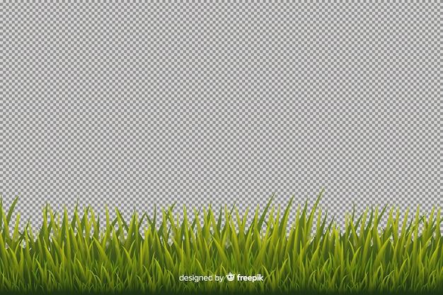 Style réaliste de bordure d'herbe verte