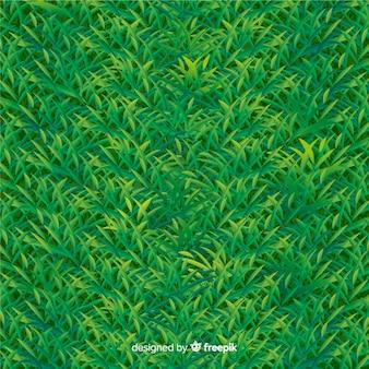 Style réaliste de fond herbe verte