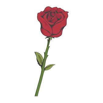 Style de tatouage rose