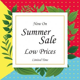 Superbe vente d'été