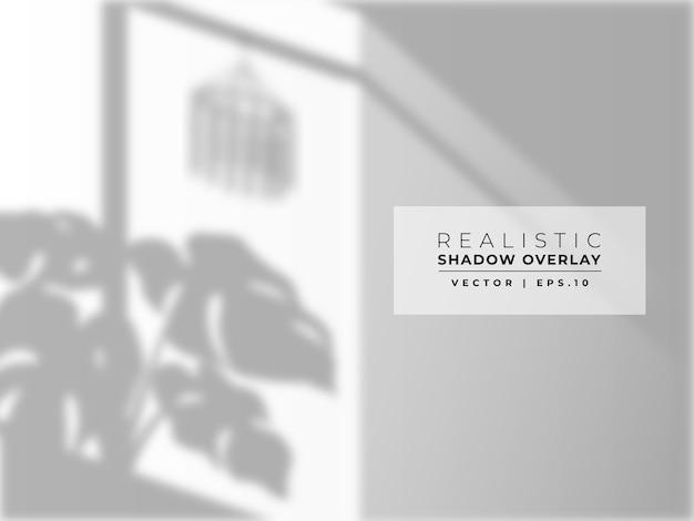 Superposition d'ombre de feuille sur le mur