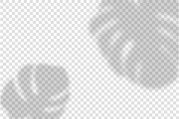 Superposition d'ombre avec plante. monstera laisse des ombres simulées.