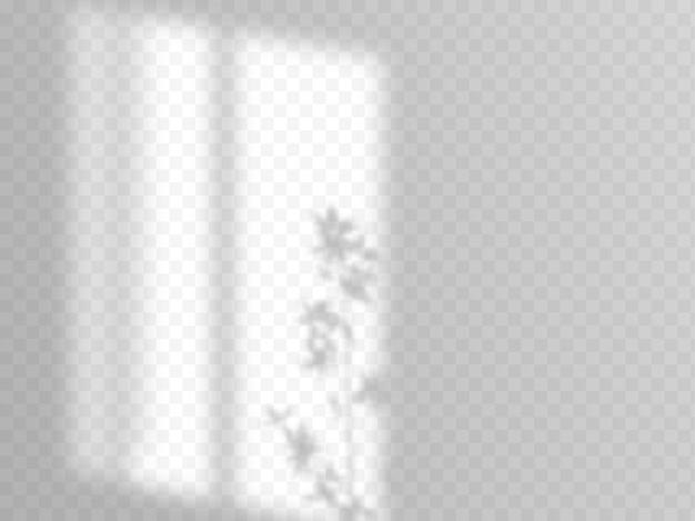 Superposition d'ombres moderne, superbe design pour tous les usages. ombre douce floue de la fenêtre et branches de plantes à l'extérieur de la fenêtre. ombres naturelles isolées sur fond transparent.