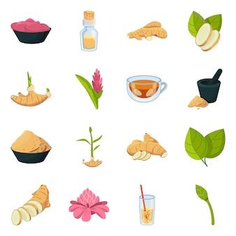 Symbole bio et alimentaire objet isolé. set bio et naturel